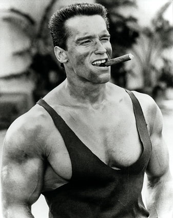 Arnold-Schwarzenegger-south of the border, Greening Hollywood