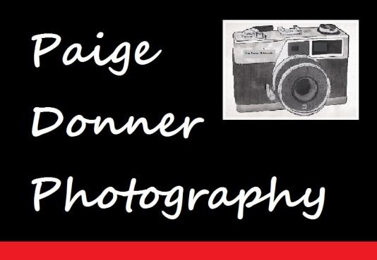 photography logo foodwinephotography