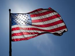 flag us with sunshine download